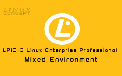 LPIC -3: Mixed Environment Certification Guide