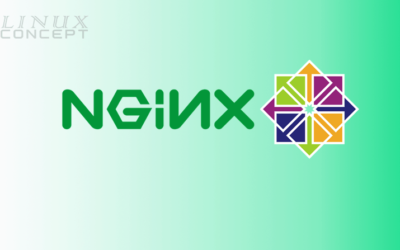 How to Install Nginx on CentOS 8 Operating System