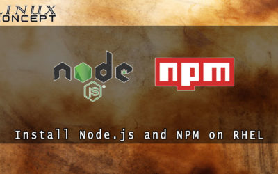 How to Install Node.js and NPM on RHEL 6 (Red Hat Enterprise Linux)