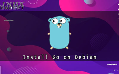 How to Install Go on Debian 10 Linux