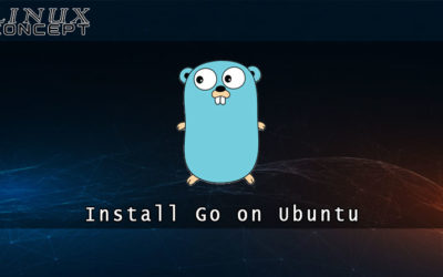 How to Install Go on Ubuntu 20.04 Linux